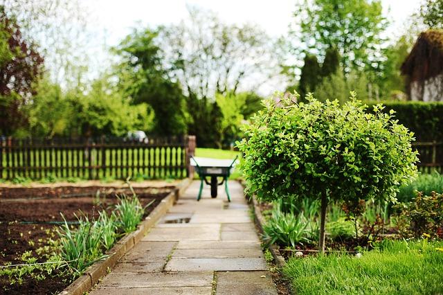 Jetzt teilnehmen: Internationale Umfrage zu Gartenarbeit während Covid-19