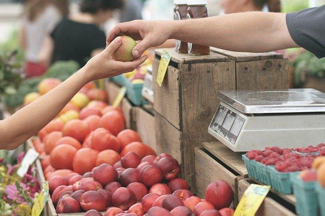 """Regionalvermarktung in Leipzig – Ein Rückblick vom dritten Forum """"Gutes Essen für Alle"""""""