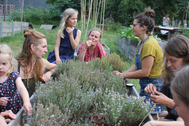 Kräuter in der Stadt – Leipziger Kräuterfest am 12. und 13. Juni